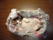 ネコ好きな人ならマイミクOK
