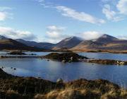 「最近のスコットランド事情」
