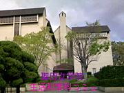 聖母女学院短大 生活科学科