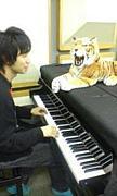滝のピアノがすき