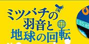 ミツバチ上映会@大阪'11/08/07