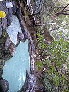 混浴貸し切りパンダ温泉