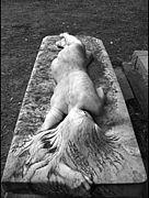 しゅりゅーさんのお墓