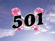 ◆501◆
