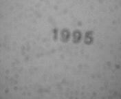 1995/ART-SCHOOL