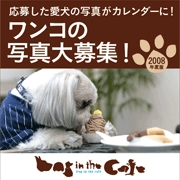 【Dog in the Cafe】
