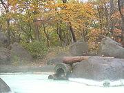 彼女と行きたい秘湯の温泉宿