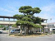 豊田市立青木小学校