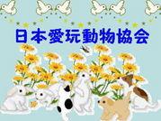 日本愛玩動物協会