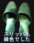 1998年度卒 緑のうわばき