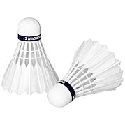 Gay Badminton
