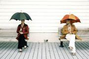 ●『傘』にセンスを感じる●