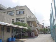 町田高校水泳部