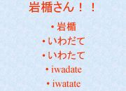 岩楯組 (Team Iwadate)