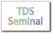 Tokyo Nintentuo DS Seminal