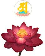 ヨガと瞑想(阿字観)