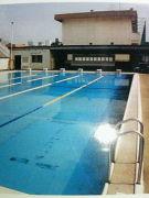福岡中央高校 水泳部