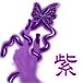 紫 —ムラサキ—