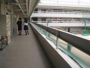 大阪薫英女学院 文理っ子♪