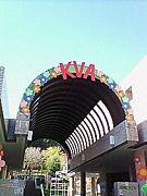 ♪KVA祭実行委員♪