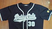 草野球チーム Daisy Cats