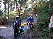 茨城県の林道