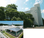 早稲田大学2005年度基礎演習26