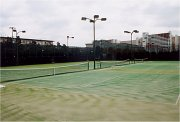 mixi テニスサークル@大阪