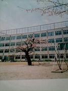 東一小(98年卒業生)