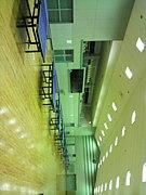 埼玉工業大学卓球部