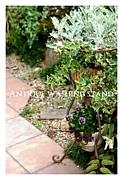 花屋Junksweet Garden  tef*tef*