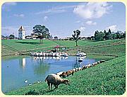 江戸崎農業公園 ポティロンの森