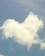 空は心で写すモノ