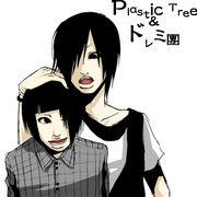 Plastic Tree&ドレミ團