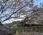 庭〜THE GARDEN〜