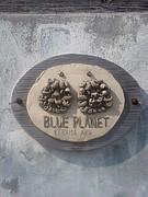 BLUE PLANET 阿嘉島