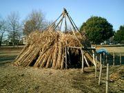 縄文考古学