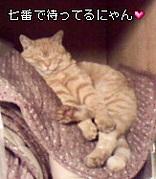 西麻布☆七番☆