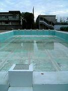 和泉高校水泳部