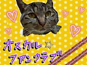 猫!オスカル☆ファンクラブ