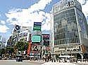【新・渋谷区の会♪】