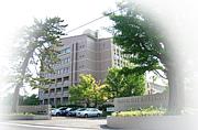 名市大L組〜2008〜