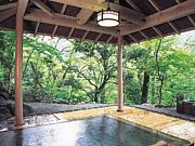 武蔵野温泉倶楽部