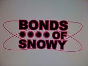 "SnowboardTeam ""BONDS OF SNOWY"""