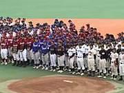 淑徳大学硬式野球部