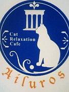 福岡★猫カフェ★アイルーロス