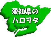 愛知県のハロヲタ