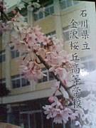 ☆中野 悟先生をrespect!!☆
