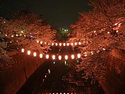 東京都板橋区絶景写真館