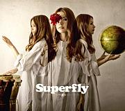 。゚+Wildflower+゚。-Superfly-